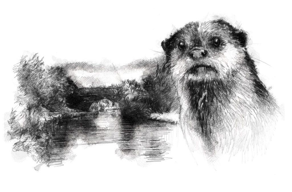 Otter river
